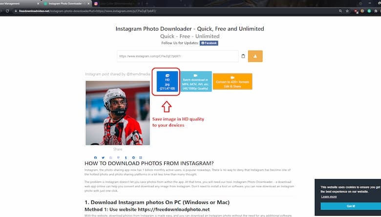 download instagram photos on PC step 4