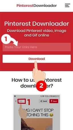 Step 2 Paste the copied Pinterest video url